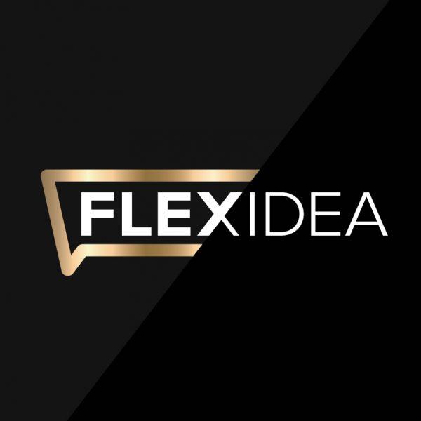 Flexidea grafiskā identitāte